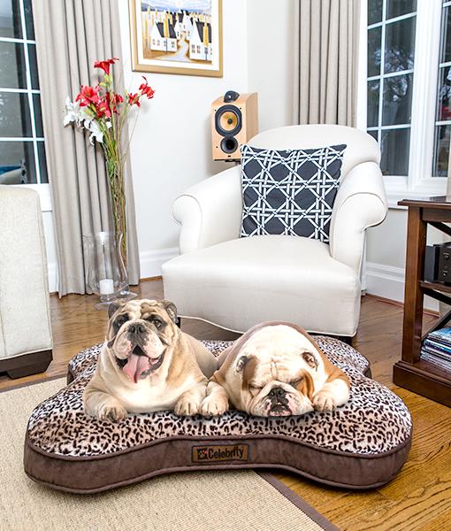 Amazon.com: Beds - Beds & Furniture: Pet Supplies